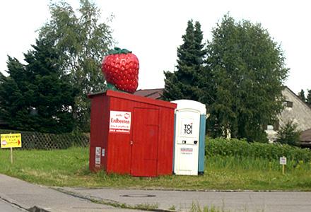 ドイツのイチゴ